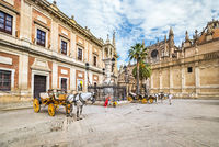Horse carriage in Seville, the Giralda cathedral in the background, Andalusia, Spain