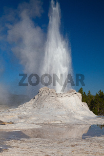 The eruption in Castle Geyser in Yellowstone NP, USA