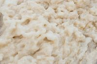 Closeup of foam on a beach