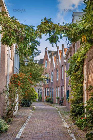 Street in Haarlem, Netherlands