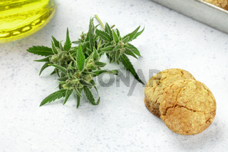 Cannabis butter cookies with marijuana buds and cannaoil, homemade healthy biscuits