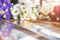 Purple and white flowers on table with reflection