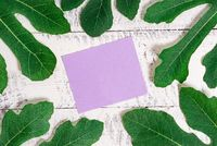 Notepaper placed above classic wooden table between green leaves. Leafage surrounding a notation paper sheet on a wood background.Artistic way of arranging flat lays photography