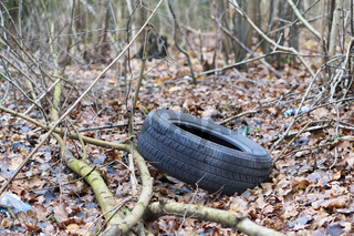 the wheel on the ground, car tire in the forest