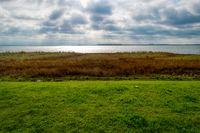 Coastal Landscape on Zingst in Germany