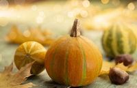 Pumpkins in autumn