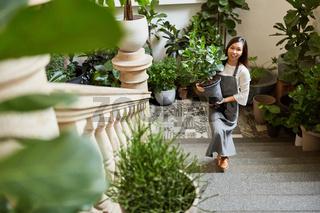 Junge Frau als Floristin liefert Pflanzen als Deko