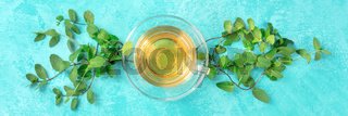 Mint tea cup panora on a turquoise background with vibrant fresh mint leaves forming a vignette, overhead shot