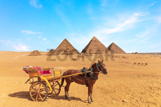A horse with the cart in front of the Great Pyramids of Giza, Egypt