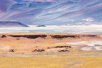 Chile Atacama desert red rocks lagoon