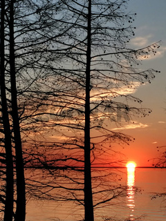 monticello reservoir in south carolina at sunset