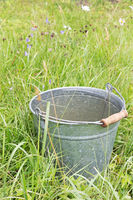 Bucket of the water in the grass