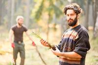 Forstwirt beim Kiefer Baum pflanzen
