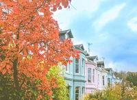 Colorful Terrace Street In A British City