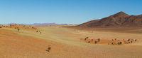 Pastel shades in Namib desert