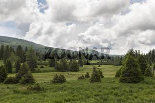 Landschaft im Boehmerwald
