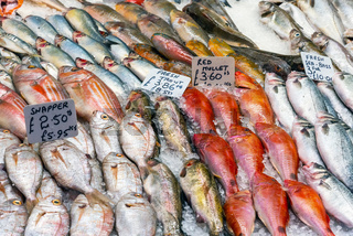 Frischer Fisch auf einem Markt in London