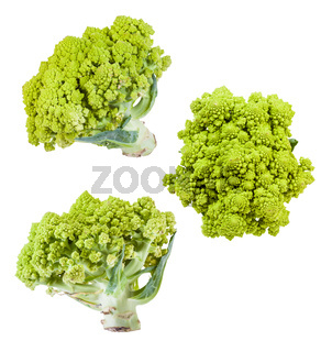 several romanesco broccoli heads isolated on white
