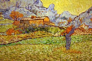 Van Gogh Eine Wiese in den Bergen