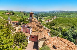 The Vineyards Of Barolo. Italy