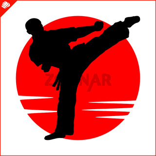 Karate high kick emblem. Martial art colored simbol design. Vector, EPS.