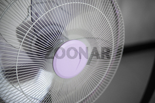 Modern violet electric fan in a living room saving peoples from hot temperature in summer days.