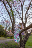 A woman sits in the branch of a tree admiring purple Jacaranda flowers