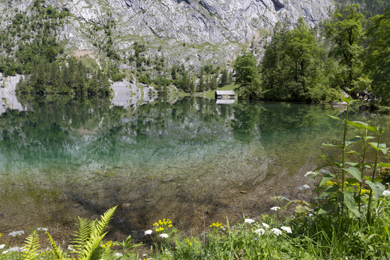 Obersee in Bavaria, Germany, in summer