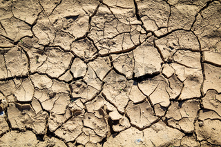 Vertrocknette Erde durch den Klimawandel