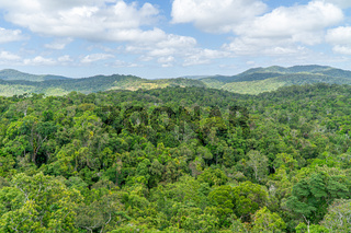 The Australian rainforest in the north of Australia near Cairns with green mountains and blue skies are white clouds