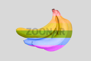 Rainbow flag on bananas. LGBT pride concept is minimal. Lesbian, gay, bisexual, transgender. LGBT flag. Poster, banner and background.