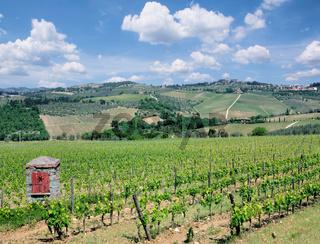 Weinlandschaft in der Chianti Weinregion,Toskana,Italien