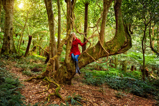 Woman relaxing in a tree among nature's rainforest garden