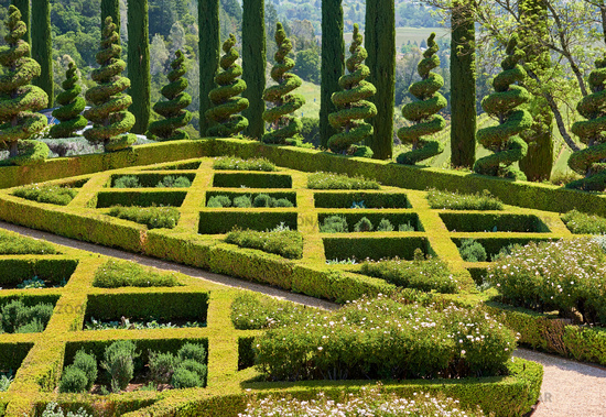 Formal garden in California vineyards