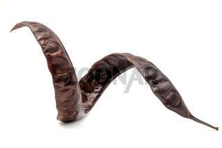 Ripe carob fruit pods