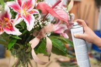 Man At Work As Florist In Flower Shop Using Spray.florist in flower shop with spray can, polishing leaves.