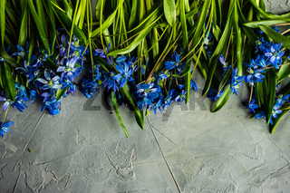 Spring floral card concept
