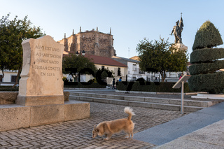 A dog passes next to a monolith that marks the the room of the house where Hernan Cortes was born