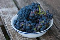Weintrauben in einer kleinen Schale