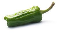 Friggitello, pepperoncino or Greek pepper, paths
