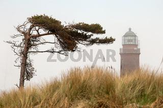 Leuchtturm 002. Fischland Darss Zingst. Deutschland