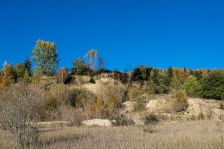 Industriebrache naturbelassen im Herbst