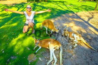 Woman with kangaroos