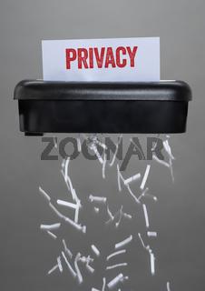 A shredder destroying a document - Privacy