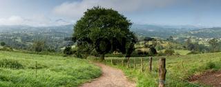 Beautiful landscape along the Camino de Santiago trail between Oviedo and Grado