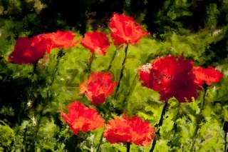 Digital Painting of red Poppies