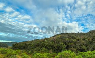 World's End in Horton Plains in Sri Lanka - popular tourist destination.