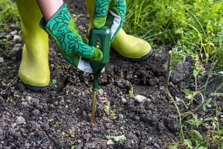 Nutrients soil meter. Measure soil for nitrogen content with digital device. Woman farmer in a garden.