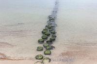 Coastal protection at the Baltic Sea