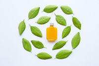 Orange juice with green leaves on white background.